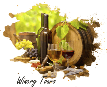 Nashik Winery tour