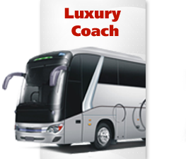 Luxury Coach Rental Services in Mumbai, Goa